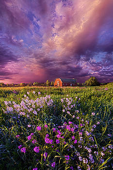 Songs of Days Gone By by Phil Koch