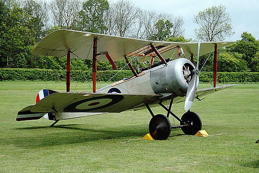 Sopwith Pup by Dave Perks
