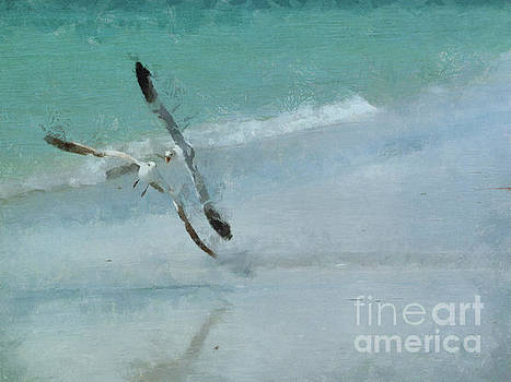 Sound of Seagulls by Claire Bull