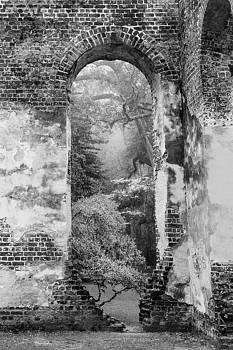 South Carolina Historic Church Black and White Sheldon Ruins-- A View From the Inside by Bill Swindaman