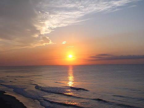 Shane Brumfield - South Carolina Sunrise