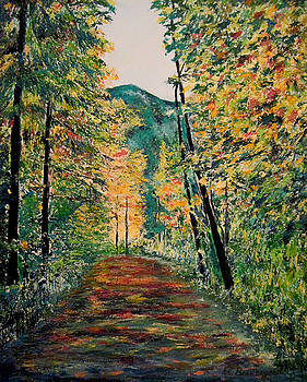South Fork Trail by Richard Beauregard