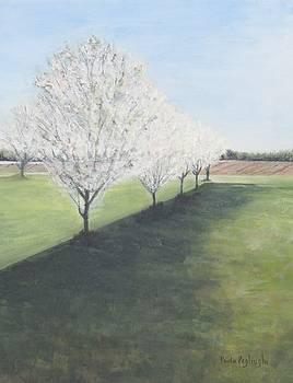 South Jersey Farmland by Paula Pagliughi