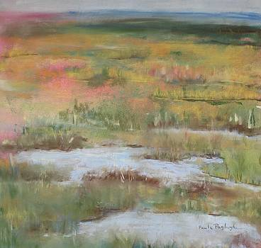 South Jersey Marsh by Paula Pagliughi