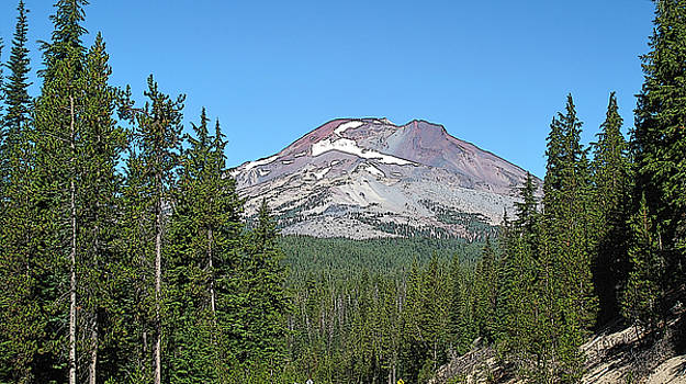 South Sister by Larry Darnell