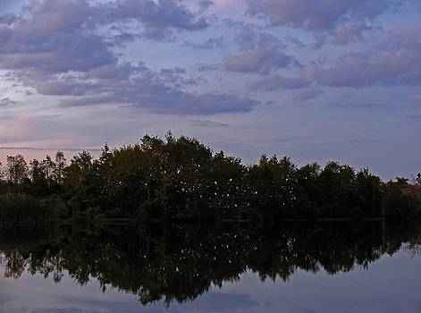 Juergen Roth - South-West Florida Sunset