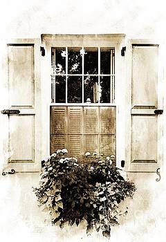 Southern Window by Debbie Green