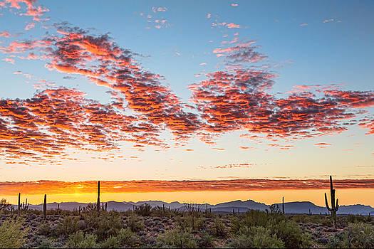 Southwest Desert Colorful Sky by James BO Insogna