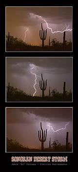 James BO Insogna - Southwest Desert Thunderstorm Progression
