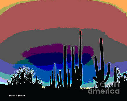 Southwestern Colors by Sharon K Shubert