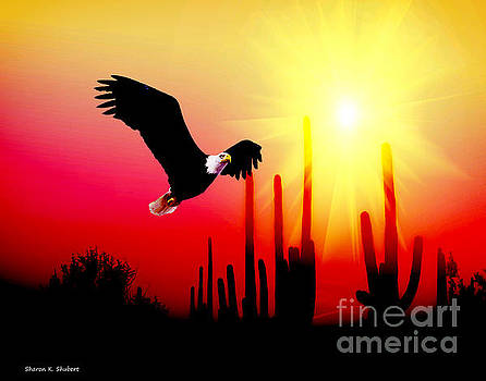 Southwestern Eagle In Flight by Sharon K Shubert