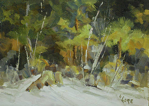 Sow at the Trailhead by Gary Gore