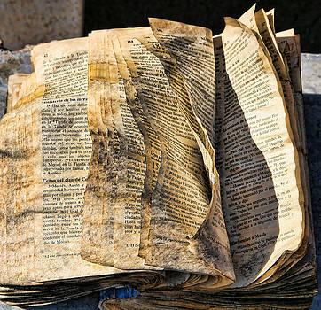 Chuck Kuhn - Spanish Bible