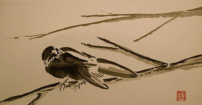 Sparrow in Sumi-e by Jeff DOttavio
