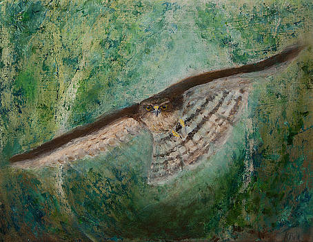 Sparrowhawk Hunting by Kathryn Bell