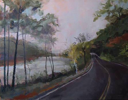 Spier Falls by Terri Messinger