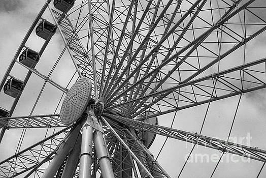 Spining Wheel  by John S