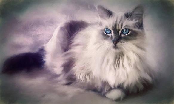 Spirit Cat 3 - Painting by Darlene Kwiatkowski