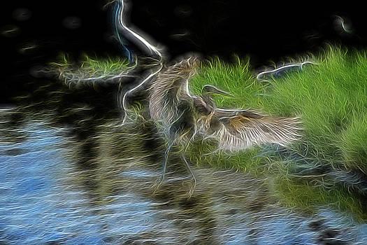 Spirit Garden 4 by William Horden