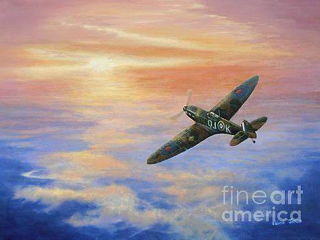 Spitfire at Sunset by Elaine Jones