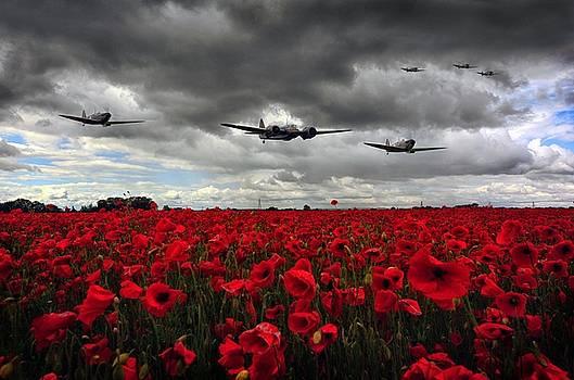 Spitfires And Blenheim by Jason Green
