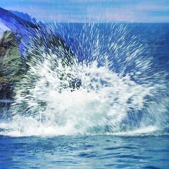 Splash by Anna Villarreal Garbis