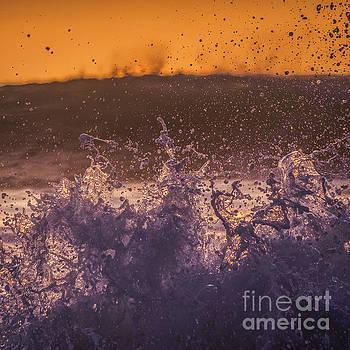 Splash by Marco Crupi