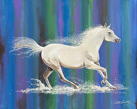 Splash of Color by Bill Dunkley