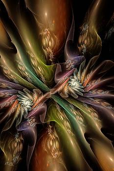 Splendor by Kim Redd
