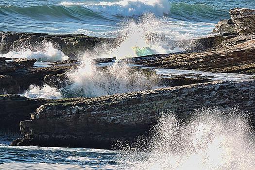 Splish Splash by Grace Dillon