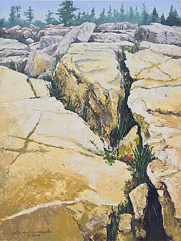 Split Rocks on Maine Coast by Peter Muzyka