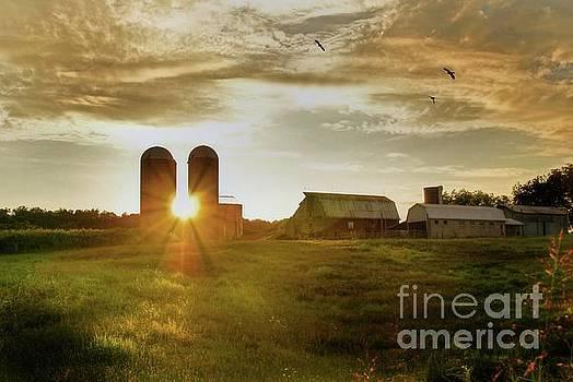Split Silo Sunset by Benanne Stiens