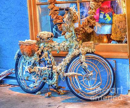 Sponge Bike by Debbi Granruth