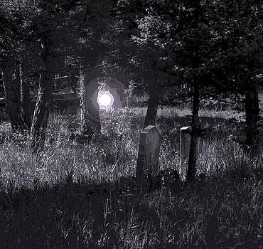 Spooky Spirit by Diana Nigon