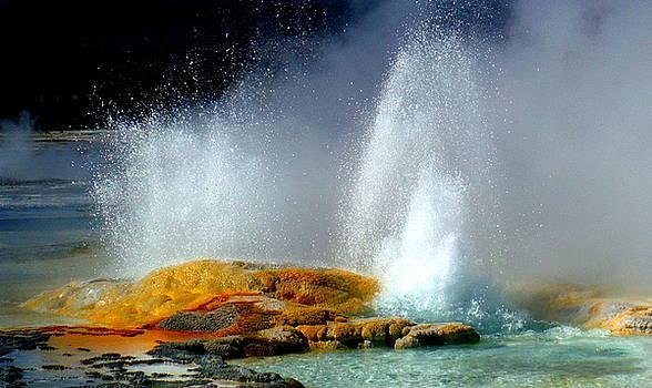 Spray by Kimberly Oegerle