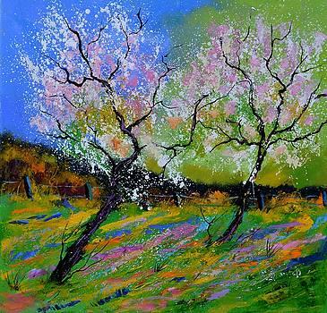 Spring 886101 by Pol Ledent
