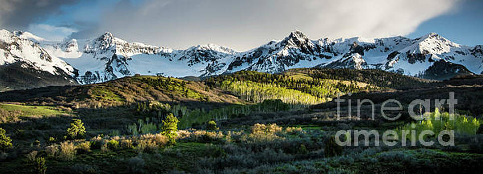 Spring at Dallas Divide  by The Forests Edge Photography - Diane Sandoval