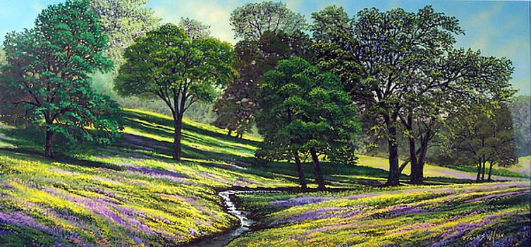 Frank Wilson - Spring Bloom Table Mountain