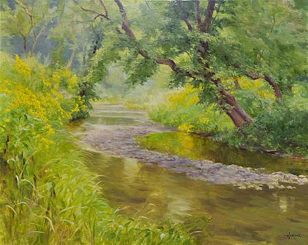 Spring Creek by Scott Harding