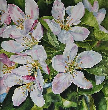 Spring Delight by Helen Shideler