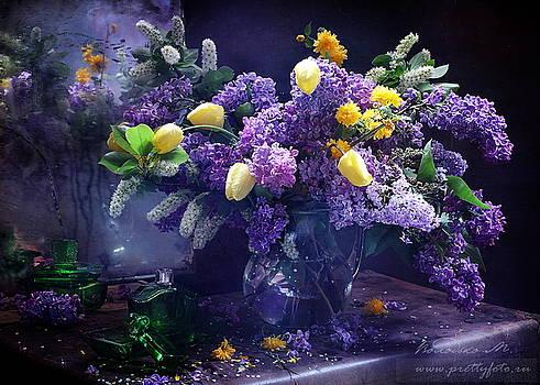 Spring dreams by Marina Volodko