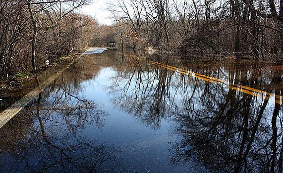 Anne Babineau - spring flood