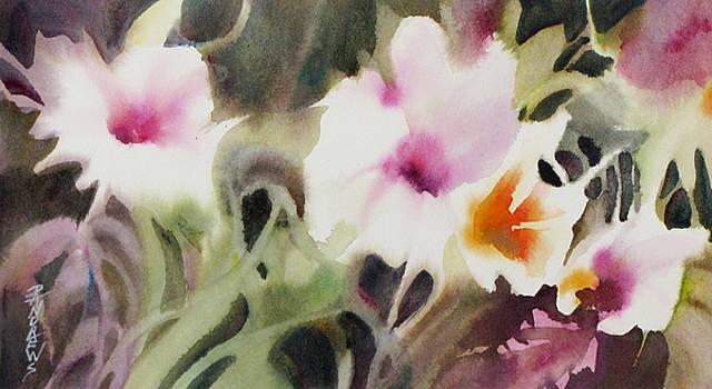 Spring Focus by Rae Andrews