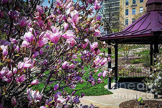 Spring Garden by Deborah Klubertanz