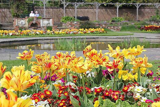 Spring Garden by Vicki Spindler