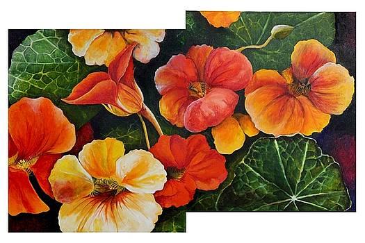 Spring by Gaura Aggarwal