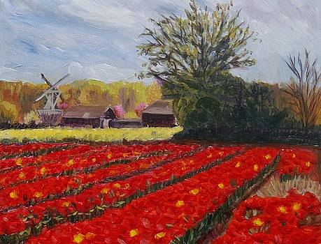 Spring in Holland by Elena Sokolova