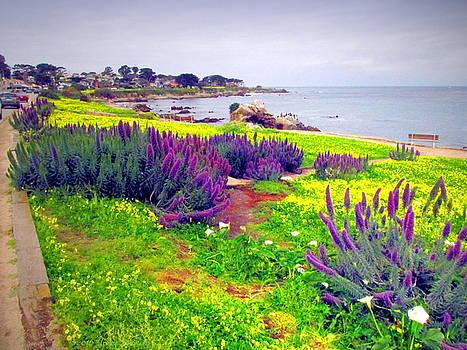Joyce Dickens - Spring In PacificGrove