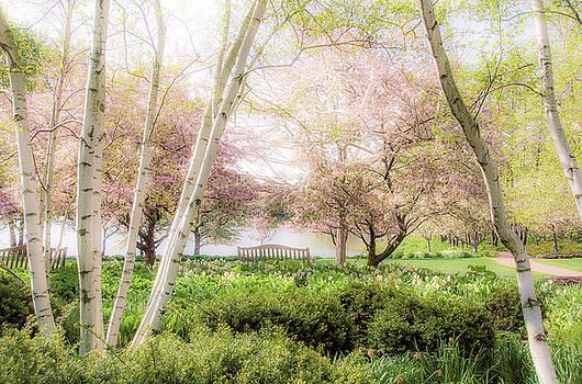 Julie Palencia - Spring in the Garden
