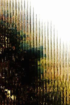Spring Light by Brian Sereda